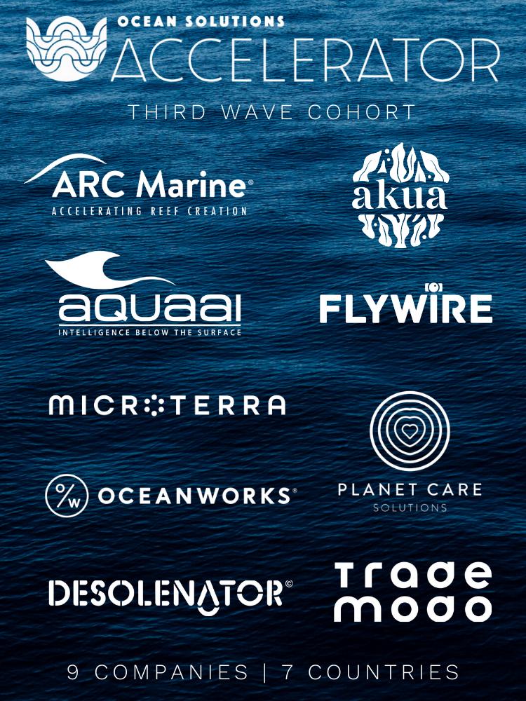2020 Accelerator logos - white - vertical