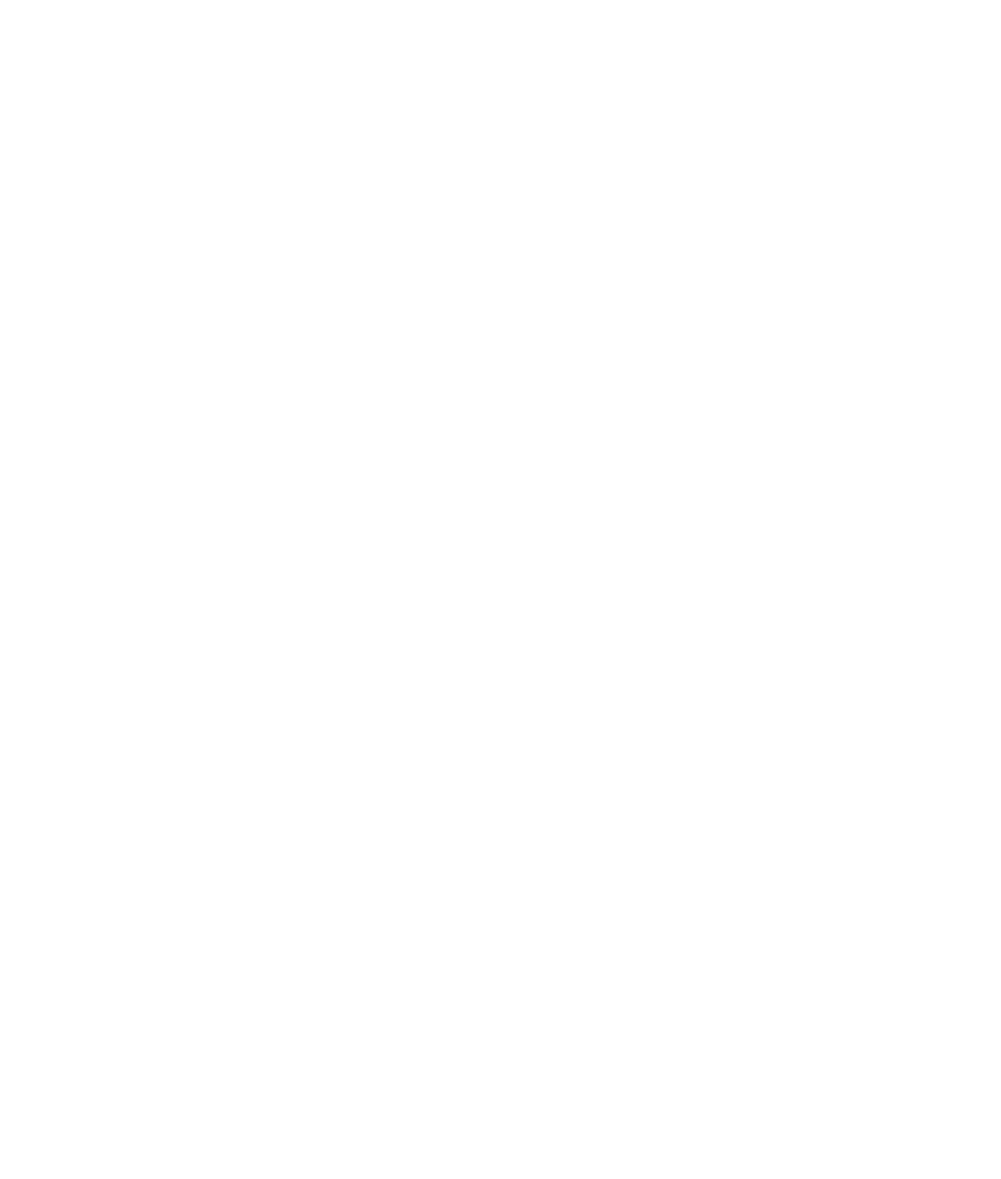 SOA Logo White Transparent Cropped